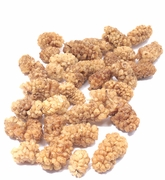 Organic MULBERRIES - 2 LBS - OUT OF STOCK
