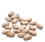 Organic PINTO BEANS - 25 LBS - OUT OF STOCK