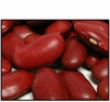Organic RED KIDNEY BEANS - 5 LBS