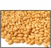 Organic SOFT PASTRY WHEAT BERRIES - 25 LBS