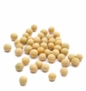 Organic SOY BEANS - 25 LBS - OUT OF STOCK