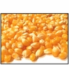 Organic YELLOW POPCORN - 5 LBS - OUT OF STOCK