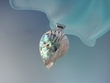 Artistic Rainbow Abalone / Mother of Pearl Sterling Silver Pendant Necklace