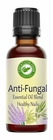 Anti-Viral, Anti-Fungal Essential Oil  Blend for Nails 1 OZ