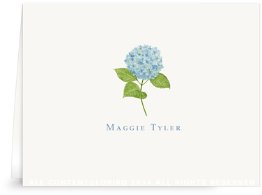 Blue Hydrangea folded note cards