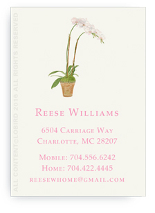 Calling card - white orchid