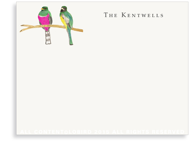 Flat Note Cards - Bird pair - Pink and green