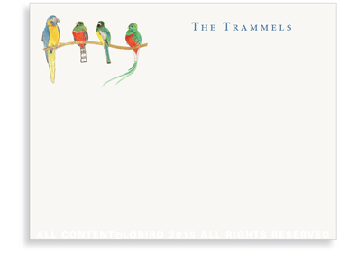 Flat Note Cards - Birds on a Branch
