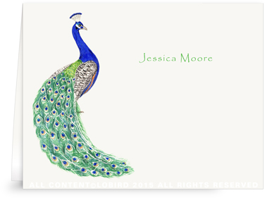 Folded Note Cards - peacock