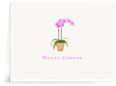 Folded note cards - purple orchid