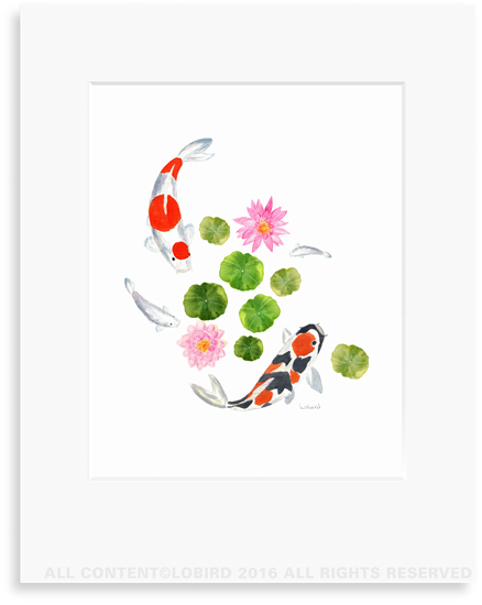 Koi Swimming 2 print (8x10) in 11x14 matt