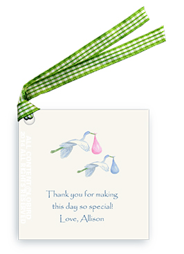 Twin Flying Blue/Pink Storks - Gift tags