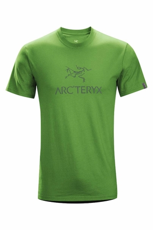 Arc'teryx Mens Arcword Short Sleeve T-Shirt Hylidae