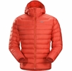 Arc'teryx Mens Cerium LT Hoody Cardinal (Close Out)