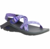 Chaco Womens Z Cloud Sphere Purple