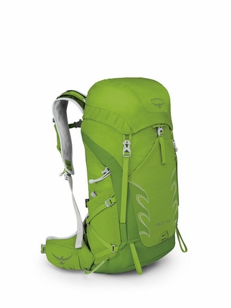 Osprey Talon 33 Spring Green M/L (close out)