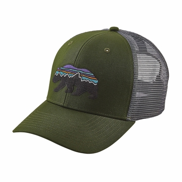 Patagonia Fitz Roy Bear Trucker Hat Glades Green