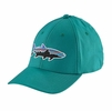 Patagonia Fitz Roy Tarpon Stretch Fit Hat True Teal