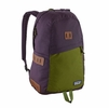 Patagonia Ironwood Backpack 20L Piton Purple