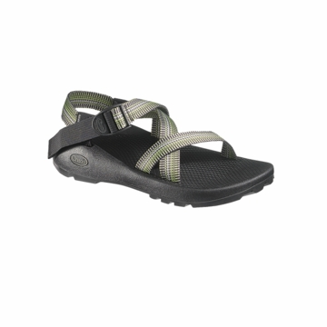 Chaco Mens Z1 Unaweep Sawgrass (Close Out)