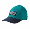 Patagonia P-6 Logo Stretch Fit Hat True Teal