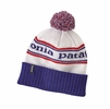Patagonia Powder Town Beanie Park Stripe: Viking Blue