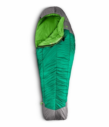 The North Face Snow Leapord 5 Degree Long Greener Pastures/ Zinc Grey