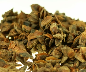 Dried star anise - 100 gr / 0.22 Pound