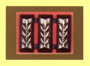 IDF Captain Rank (Metal)