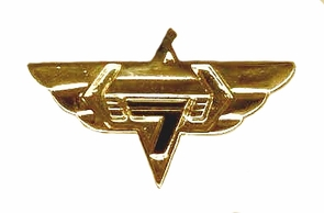 IDF Israel Army Armored  Car Pin