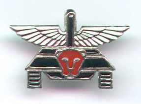 IDF Israel Army Palsar Unit Pin