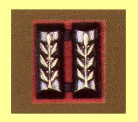 IDF Lieutenant Rank (Metal)