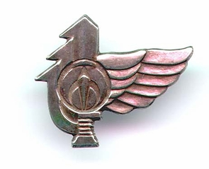 IDF Nahal Fighter Insignia