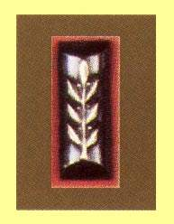 IDF Secound Lieutenant Rank (Metal)