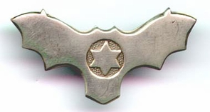 Israel Air Force IDF Anti Aircraft Command Pin
