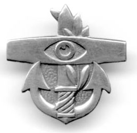 Israel Air Force IDF Coastal Radar Operator Pin