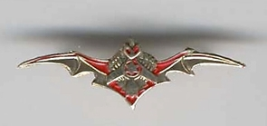 Israel Air Force IDF IDF Pin