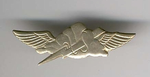 Israel Army Anti Terror Unit Pin