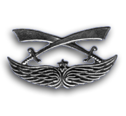 Israel Army Druze Forces Insignia