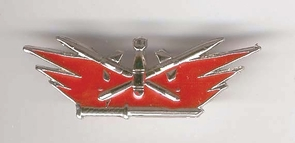 Israel Army IDF  Bonb Disposal Pin