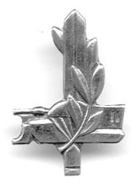 Israel Army IDF Infantry School Officer Insignia
