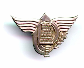 Israel Army IDF Sapper Unit Pin