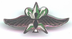 Israel Army Intelligence Wings