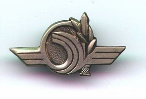 Israel Army Ksshatit Unit Pin