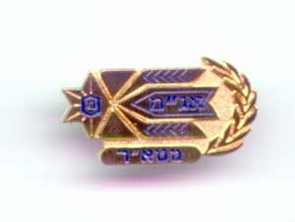 Israel Army National HQ Insignia
