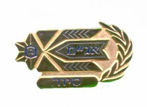 Israel Army Ops Patrol Officer Insignia