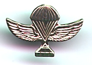 Israel Army Paratroopers Air Suppy Pin