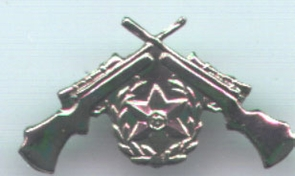 Israel Army Police Sniper Pin