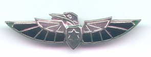 Israel Army Special Intelligence Shaldag Unit Pin