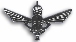Israel Army Yamas Special Unit Pin